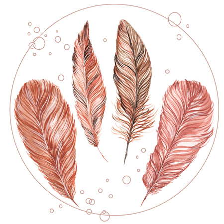 set of feathers isolated on white background, hand-painted watercolor. Brown and his shades. It can be used for the development of a , corporate identity, an invitation to the wedding, boho party
