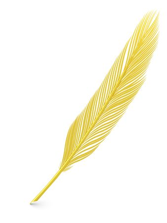 Golden feather quill over white background. High resolution 3D image photo