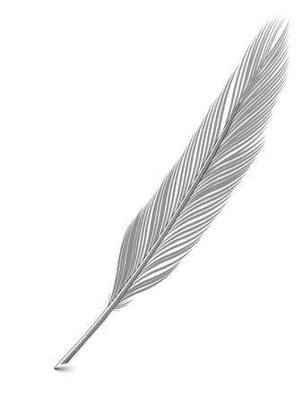 Silver or platinum feather quill over white background. High resolution 3D image