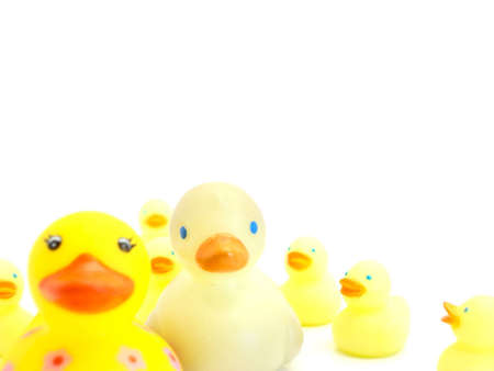 A Mother and Father duck loved by there children