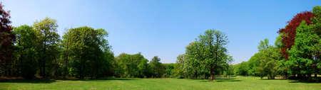 公園のパノラマ