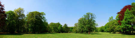 Panorama of a Park