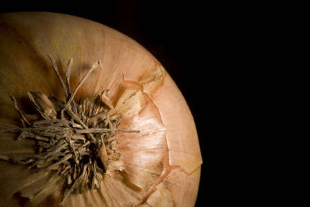 Onion on black background