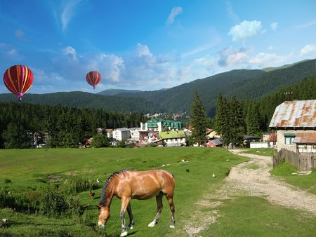 Summer Mountain Landscape with animals and hot air balloons. Stock Photo - 3302651