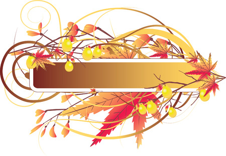 Autumn elements with decorative fruits on frame Vector