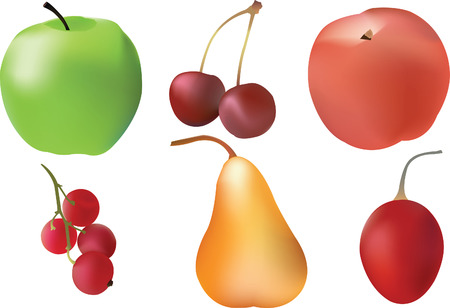 Vector Fruit set made with mesh tool