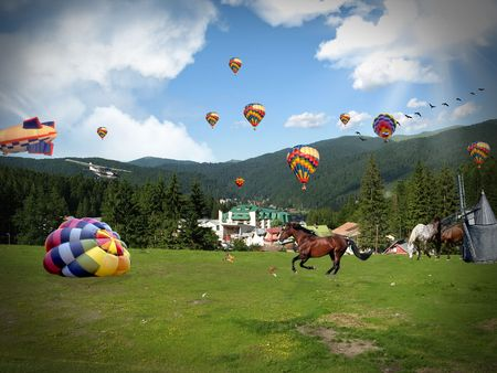 Colorful hot air balloons on mountain field and wild horses