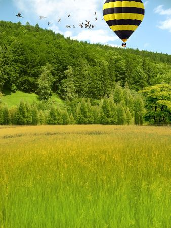 Hot air balloon in the woods.