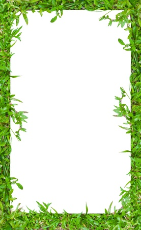 Portait Image frame in green grass border style To use with vertical or portrait image photo