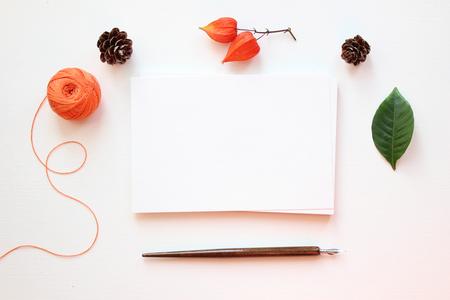 Mockup voor presentaties. Bovenaanzicht van een desktop met pen en natuurlijke elementen. Stockfoto