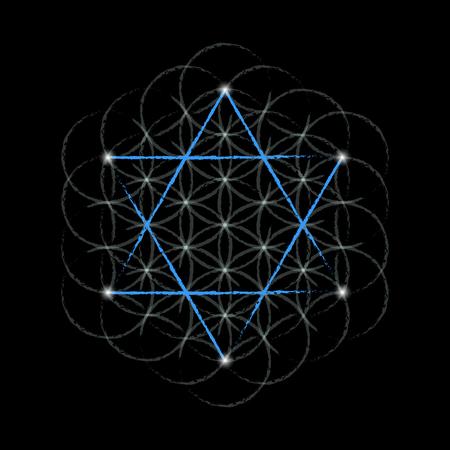 estrella de la vida: Flor de la vida con la estrella de david. Geometría sagrada. Ilustración del vector.