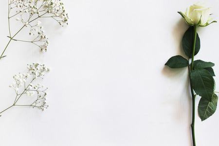 Moderne trendy Mockup, lay-out, sjabloon met een witte Rose en Gypsophila. Trouwuitnodiging, wenskaart, andere ontwerpen. Stockfoto
