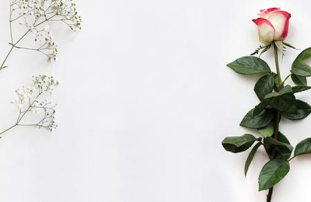 Mockup voor presentaties met een roos en Gypsophila. Mockup, lay-out, template voor brochure, banner. Lege ruimte voor tekst.
