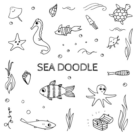 underwater fishes: Doodle sea, ocean life elements. Sketch fishes, sea shells and other underwater creatures.