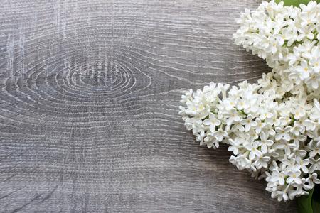 Lilac bloesemsmodel op rustieke houten achtergrond met lege ruimte voor groetbericht. Bovenaanzicht.