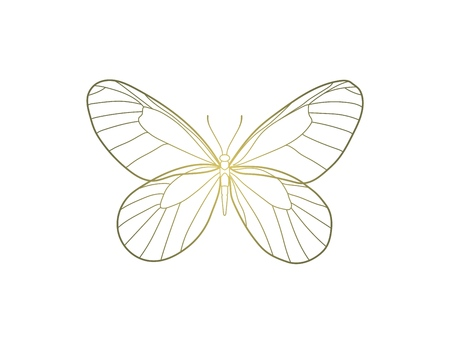 Butterfly with golden gradient vector illustration