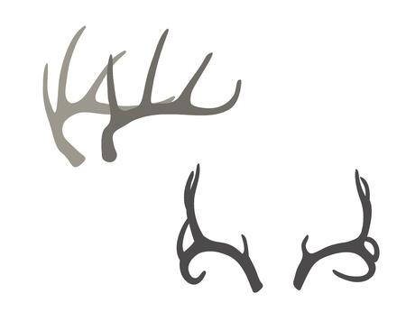 Deer antlers hand drawn vector illustration. Boho design elements. Ilustração