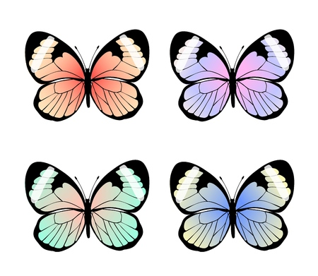 Collection of exotic colorful butterflies, vector illustration.