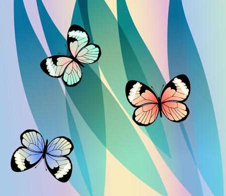 Exotic colorful butterflies on fantasy leaves background, vector illustration. Ilustração