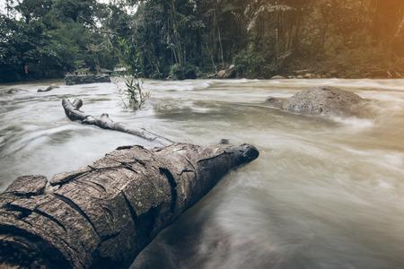 De logs verdronken in stromen
