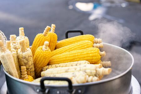 Fresh hot corn on the cob steaming from the cart of a street food vendor - Freshly cooked corn cobs stacked and for sale at a local hawker market - Delicacy, cuisine and travel foodie concept 版權商用圖片