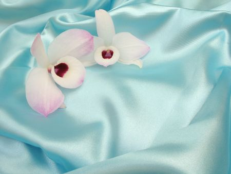 Two delicate white and purple orchids on a loosely laid sheet of blue satin, with copy-space and shallow depth-of-field.