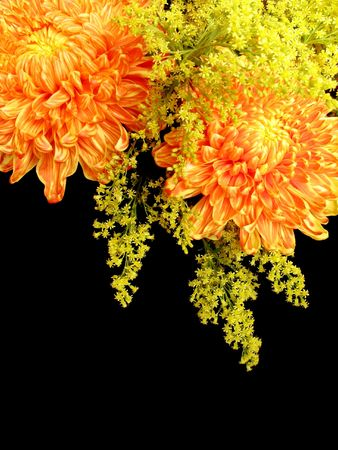 A flower arrangement of red, orange and yellow Chrysanthemums and yellow Goldenrods, isolated on black, with copy-space at bottom. Stock Photo