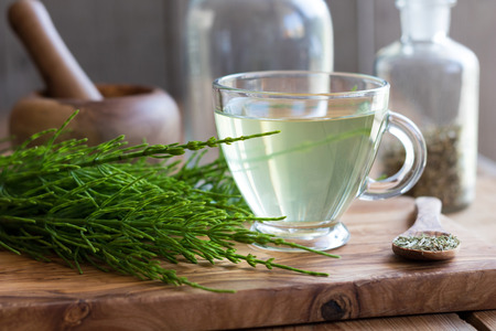A cup of horsetail tea with fresh and dried horsetail plant