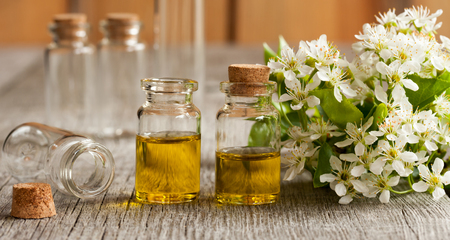 Two bottles of essential oil with white tree blossoms on a wooden background Stock Photo