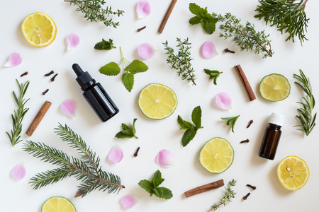 Selection of essential oils and herbs on a white background - peppermint, lime, lemon, melissa, thyme, rosemary, cinnamon, clover, thuja, rose petals Archivio Fotografico