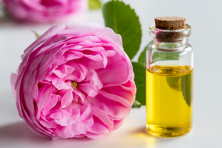 Rosenätherisches Öl: eine Flasche Öl mit einer Rosenblume auf einem weißen Hintergrund Standard-Bild - 80155467