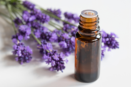 A bottle of lavender essential oil with fresh lavender on a white background