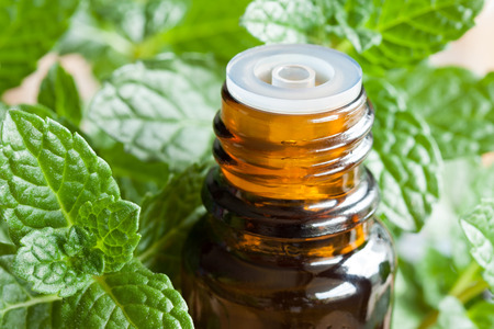 A bottle of peppermint essential oil with fresh peppermint leaves