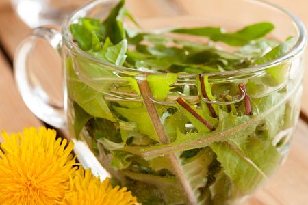 Dandelion tea: hot water poured over fresh dandelion leaves
