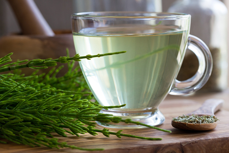 A cup of horsetail tea with fresh and dried horsetail on a wooden background Stock Photo