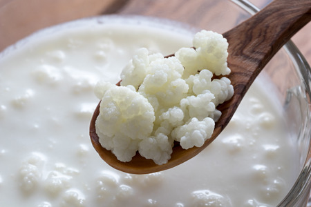 Kefir grains on a wooden spoon above a jar of milk kefir Фото со стока - 83825649