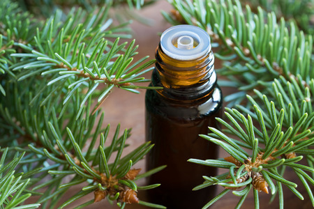 A bottle of spruce essential oil with fresh spruce twigs