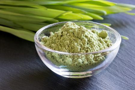 Green barley grass powder, with fresh barley grass in the background