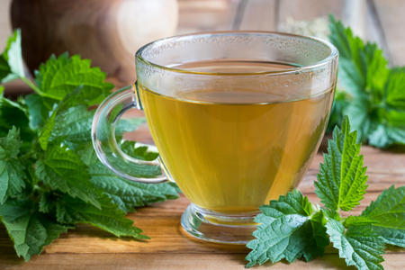 A cup of nettle tea on a wooden table, with fresh stinging nettles in the background Archivio Fotografico