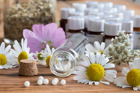 A bottle of homeopathic globules with chamomile and other herbs and flowers in the background Stock Photo