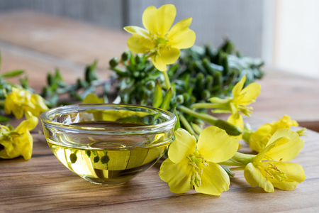 Evening primrose oil in a glass bowl, with fresh evening primrose flowers in the background Stock Photo
