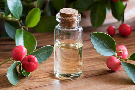 Wintergreen essential oil in a transparent bottle with wintergreen twigs on a wooden