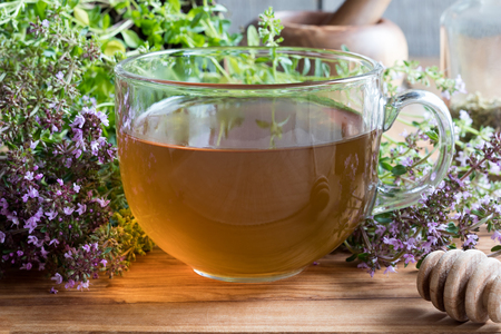 A cup of creeping thyme (thymus serpyllum) tea, with fresh blooming creeping thyme on a wooden background