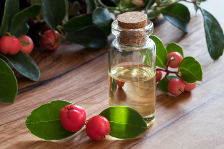 A bottle of wintergreen essential oil with fresh wintergreen twigs on a wooden background
