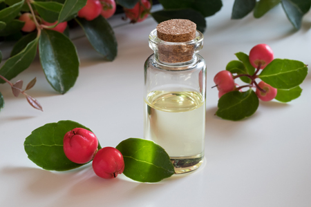 A bottle of wintergreen essential oil with wintergreen twigs on a white background