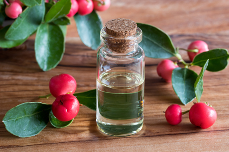 A bottle of wintergreen essential oil with wintergreen leaves and berries on a wooden background