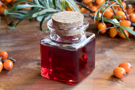 argousier: Sea buckthorn oil in a glass bottle on a wooden table, with sea buckthorn berries and leaves in the background