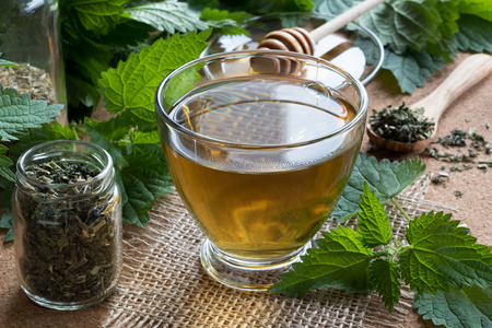 A cup of nettle tea with fresh and dry nettles in the background Stock Photo