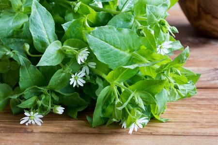 新鮮なハコベ葉と木製のテーブルの上に花