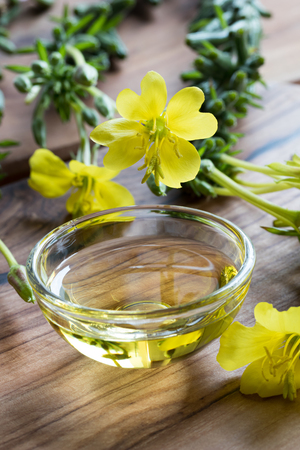 Fresh evening primrose flowers next to a bowl of evening primrose oil Stock Photo